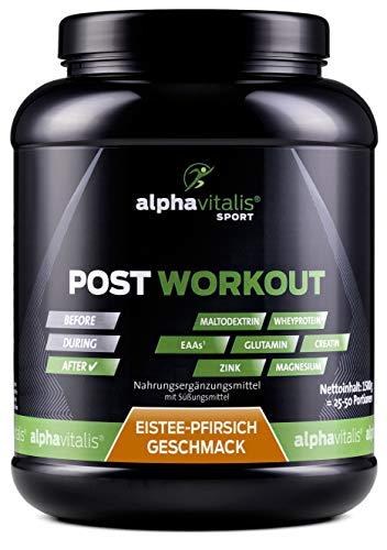 POST WORKOUT Shake mit Maltodextrin, Whey Protein, EAA, BCAA, Creatin, L-Glutamin,...