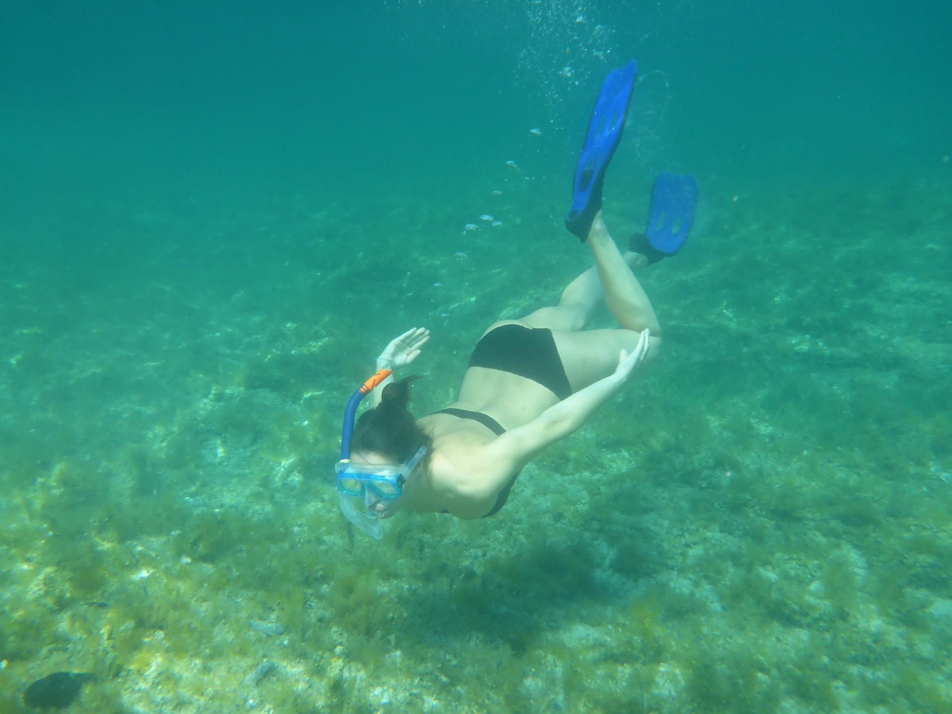Taucherbrille Unterwasserwelt