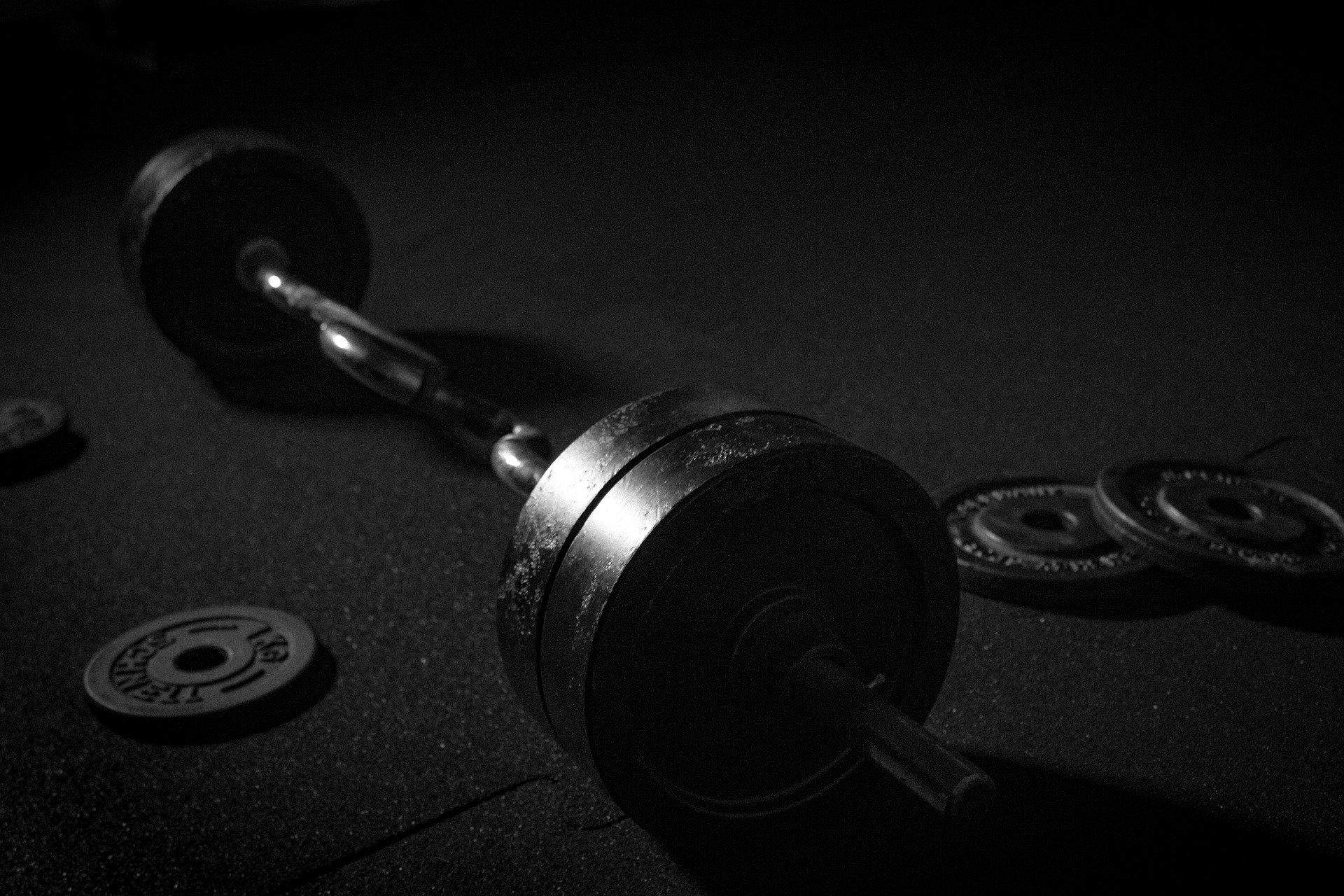 Hantelscheibe verschiedene Gewichte