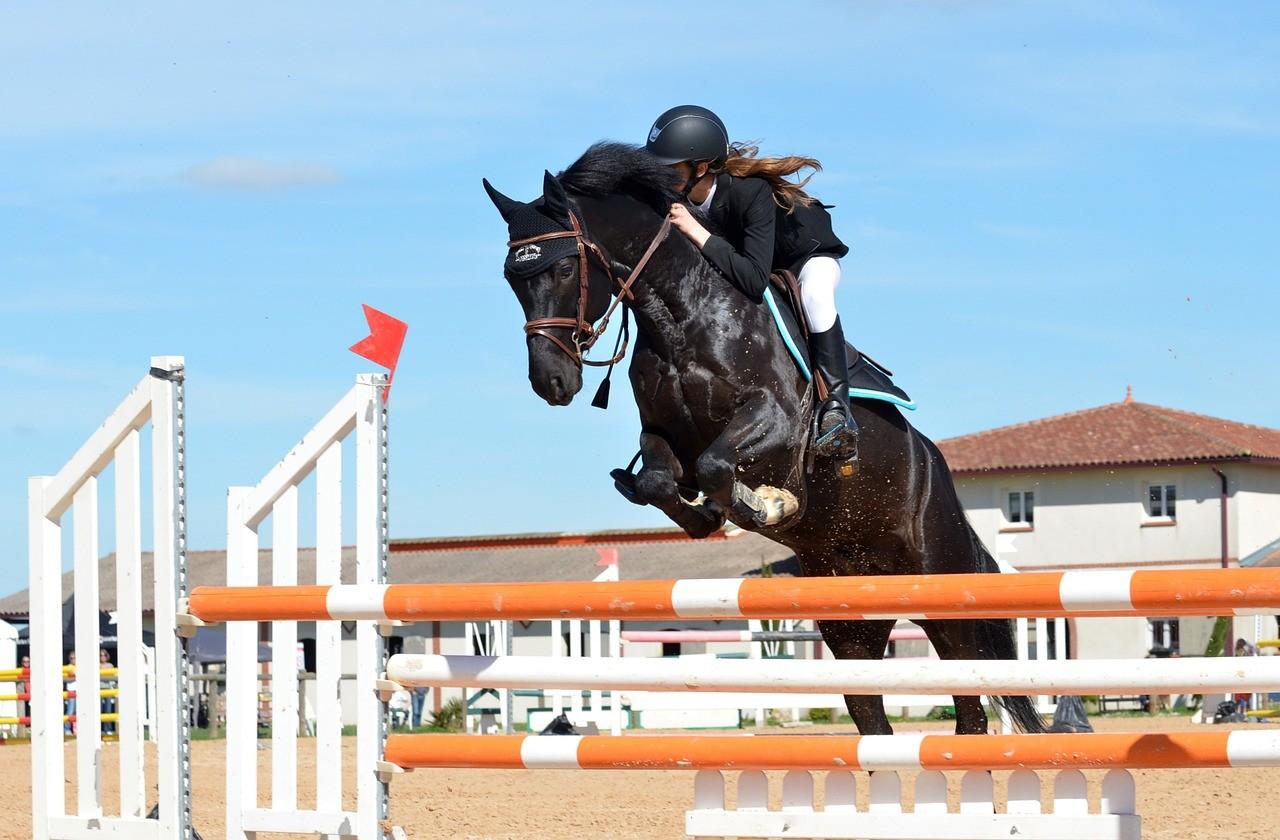 Eine Reithose bietet dem Reiter besten und sicheren Halt im Sattel.