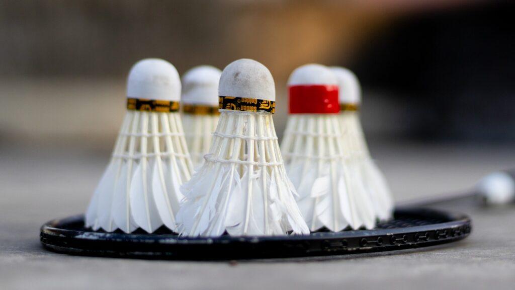 Das Badminton-Set ist besonders praktisch, weil es nicht nur Schläger, sondern auch Bälle und eventuell auch ein passendes Netz enthält.